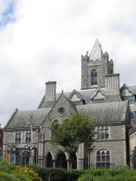 Dublinia